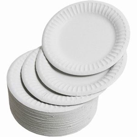 Picture for category Disposable Plates & Bowls