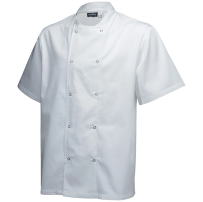 Picture of White Short Sleeve Chef Jacket (L)