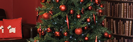 Picture for category Christmas Decorations