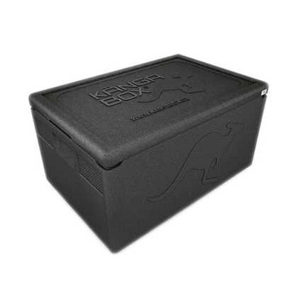 Picture of Thermo Storage Box 46L