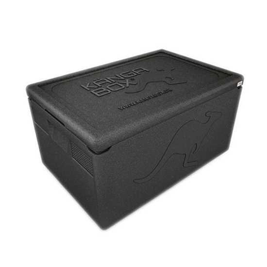 Picture of Thermo Storage Box 46L