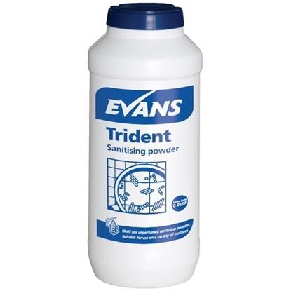 Trident Sanitising Powder