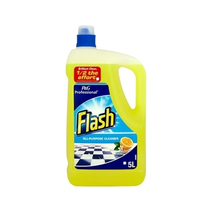 Picture of Flash All Purpose 5L