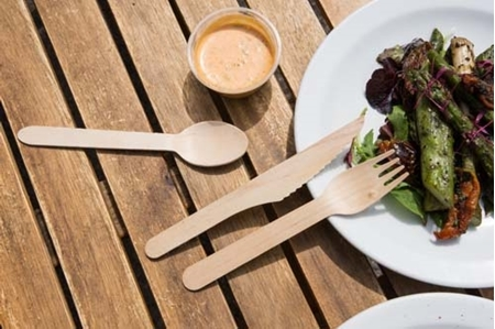 Picture for category Compostable Cutlery