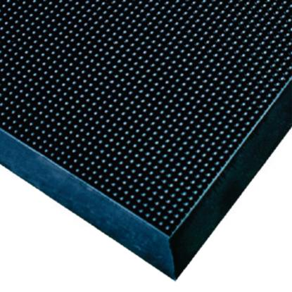 Disinfecting Sandibrush Floor Mat 60x100cm