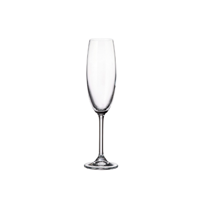 Melody Champagne Flute 22cl