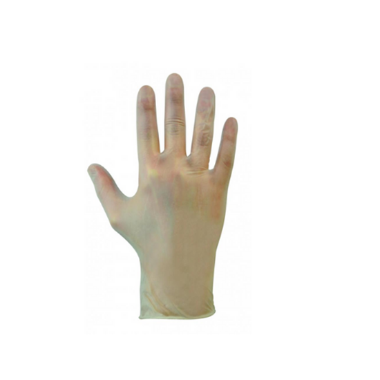 Clear Powdered Vinyl Gloves (Medium)